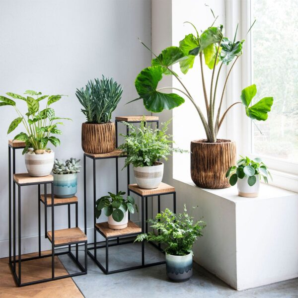 groen-in-huis_4